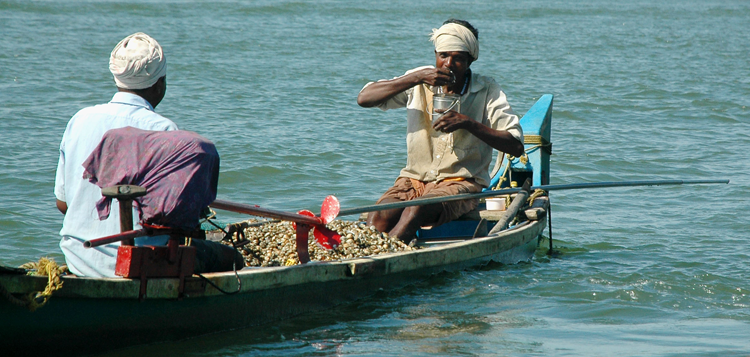 Image of two fishermen in small boat with clams, Ashtamudi estuary, India